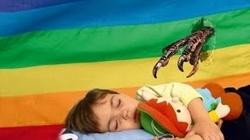 Łapska gender będą daleko od naszych dzieci - miniaturka