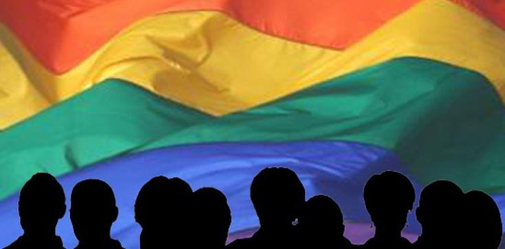 Wściekły atak LGBT na rodzinę! - zdjęcie