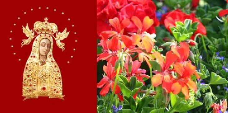 Dziś święto Najświętsza Maryi Panny Licheńskiej - zdjęcie