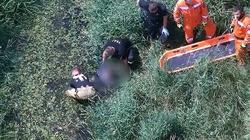 [Wideo] UWAGA! Życie 63-latki wisiało na włosku. Uratowana na bagnach dzięki operatorowi policyjnego drona - miniaturka