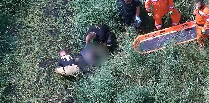 [Wideo] UWAGA! Życie 63-latki wisiało na włosku. Uratowana na bagnach dzięki operatorowi policyjnego drona - zdjęcie