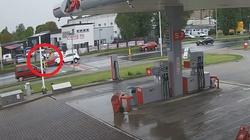 [Wideo] Kalisz. Potrącony na pasach pieszy przeleciał nad maską samochodu - miniaturka