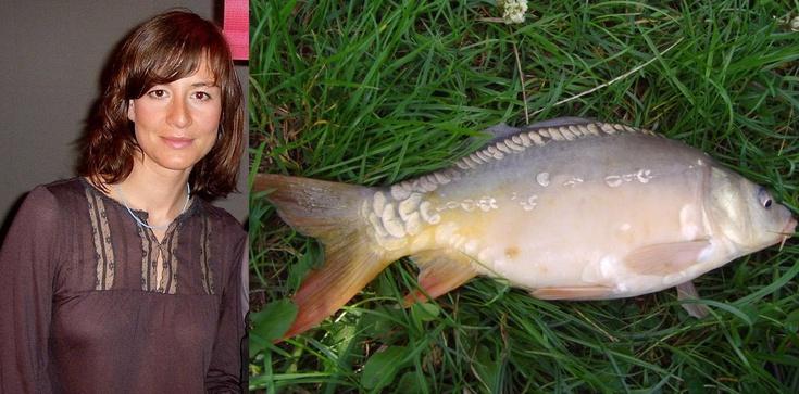 Znana aktorka jest za zabijaniem dzieci, ale nie karpi! - zdjęcie
