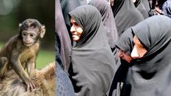 Libia: 16 ofiar śmiertelnych. Powodem małpa i zerwany hidżab... - miniaturka