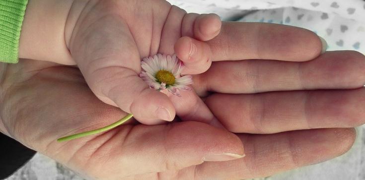 Kutno: W oknie życia pozostawiono niemowlę - zdjęcie