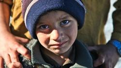 Syryjczycy nadal czują się zmuszeni do emigracji - miniaturka
