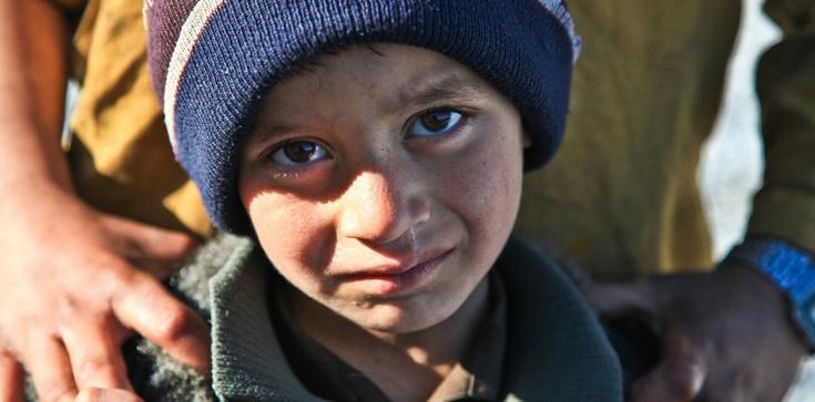 Syryjczycy nadal czują się zmuszeni do emigracji - zdjęcie