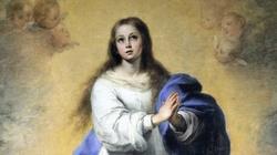 O Maryjo bez grzechu poczęta, módl się za nami! - miniaturka