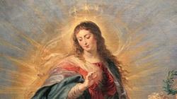 Niesamowita rola Maryi w dziejach zbawienia. O. Mirosław Kopczewski OFMConv.  - miniaturka