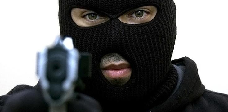 Inwigilacja i indyk – sposoby na przestępców - zdjęcie