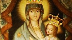Najświętsza Maryja Panna, Matka Pocieszenia - miniaturka