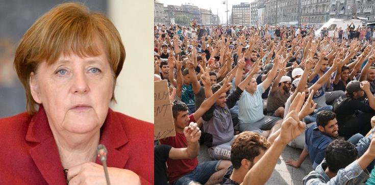 Ryszard Czarnecki: Survival a la Angela Merkel - zdjęcie