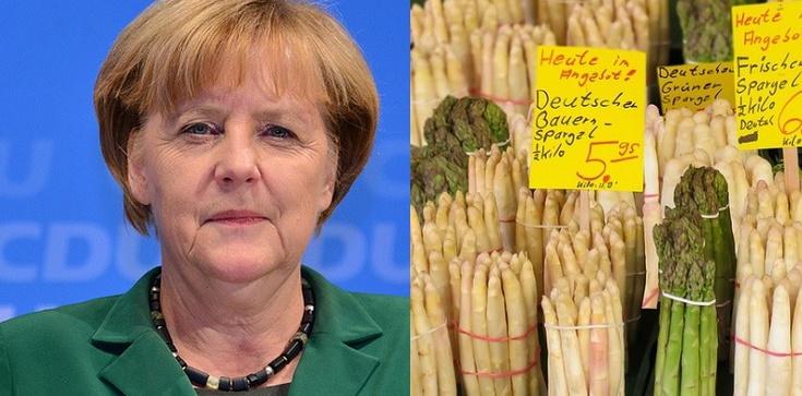 Wyjazdy do Niemiec już bez testów i kwarantanny - zdjęcie