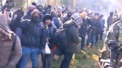 Niemcy: od sierpnia przez Białoruś trafiło do Niemiec ponad 4300 migrantów - miniaturka