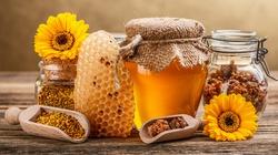 W zdrowym ulu zdrowy miód - miniaturka