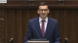 Siostra Morawieckiego: On nie będzie marionetką Kaczyńskiego - miniaturka