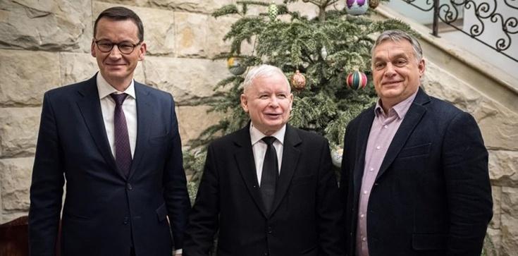 Poller: Jak niemiecki agent Orban wymusił na Kaczorze porozumienie z UE, czyli świat według totalnych - zdjęcie
