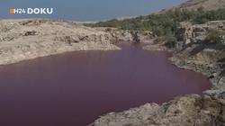 [Wideo, zdjęcia] Szokujące zmiany na Morzu Martwym. Woda zmieniła kolor na krwistoczerwony - miniaturka