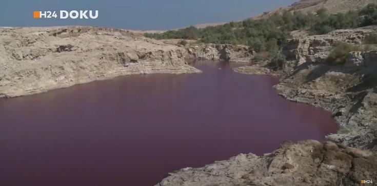 [Wideo, zdjęcia] Szokujące zmiany na Morzu Martwym. Woda zmieniła kolor na krwistoczerwony - zdjęcie