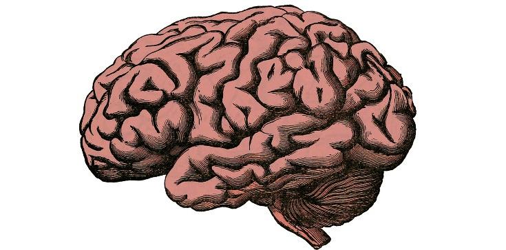 Naukowcy: Jesteś zapominalski? Możesz być GENIUSZEM!!! - zdjęcie