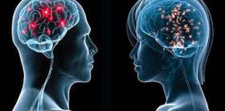 Ludzie inteligentni mają 3 wady. Czy też je masz? - zdjęcie