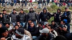 Na każde 10 000 Syryjczyków... 1300 popiera ISIS - miniaturka