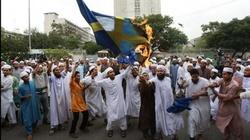 Islamiści infiltrują szwedzką politykę! - miniaturka