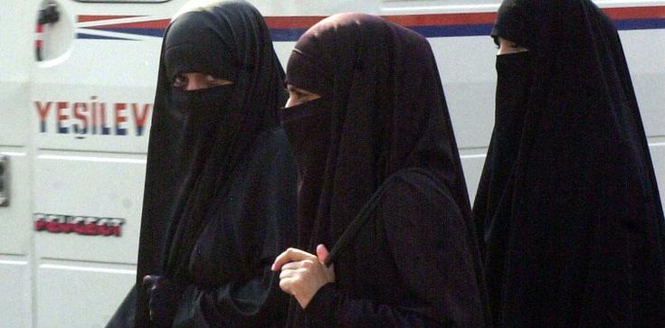 Kard. Tauran: Dialog z islamem tak, uległość NIE! - zdjęcie