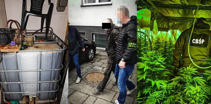 Kolejny cios w narkobiznes. Śląska policja zlikwidowała dwie plantacje konopi - zdjęcie