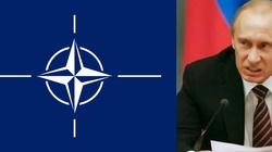 NATO solidarne wobec rosyjskiego zagrożenia - miniaturka