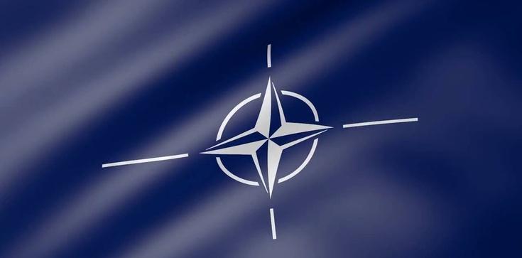 ,,Alternatywa dla NATO''. Co miał na myśli wicepremier Estonii - zdjęcie