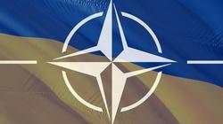 Ukraina deklaruje: Idziemy do NATO. Czekamy na wsparcie - miniaturka