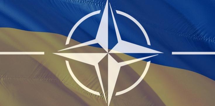 Ukraina zgodnie z prawem może dołączyć do NATO - zdjęcie