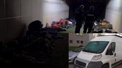 Lubuscy policjanci zatrzymali busa z 41 imigrantami - miniaturka