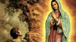 Matka Boża z Guadalupe. Obraz nie ręką ludzką uczyniony!  - miniaturka