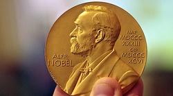 Nobel z chemii dla trójki naukowców - miniaturka