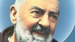 Ojciec Pio: Radość, humor i łzy - miniaturka
