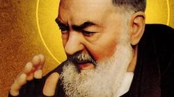 Święty ojciec Pio z Pietrelciny, prezbiter - miniaturka