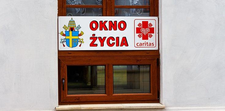 Obłęd! Zniszczyli Okno Życia w Sandomierzu!  - zdjęcie