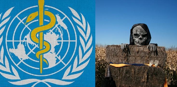 Szokująca akcja WHO i UNICEF. Szczepionka powoduje bezpłodność - zdjęcie