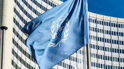 Polska w ONZ razem z USA i Izraelem - miniaturka