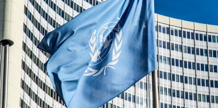 Forum ONZ przesiąknięte lewakami? Ordo Iuris w mniejszości będzie bronić życia - zdjęcie