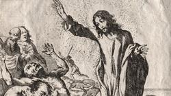 ,,Czego chcesz od nas, Jezusie, Synu Boży?'' - miniaturka
