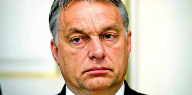 Wiktor Orban zrozumiał, że polityka liberalna to szkodliwa głupota - zdjęcie