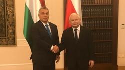 Viktor Orban: ,,Za 10 lat Polska będzie nowymi Niemcami Europy'' - miniaturka