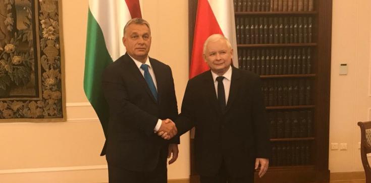 Viktor Orban: ,,Za 10 lat Polska będzie nowymi Niemcami Europy'' - zdjęcie