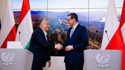 Premier Morawiecki publikuje artykuł w węgierskiej prasie. Orban: Wspólnie możemy więcej! - miniaturka