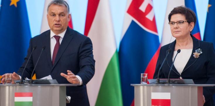 Matka Kurka: Czy w Polsce będzie jak na Węgrzech?  - zdjęcie