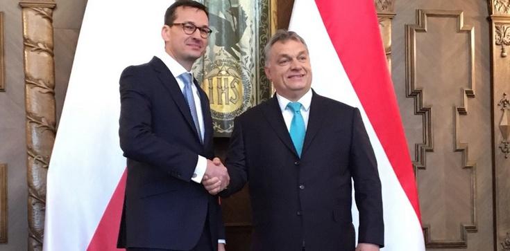 Viktor Orban: V4 popiera polską propozycję dot. planu geostrategicznego UE - zdjęcie