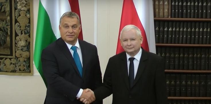 Premier Orban o prezesie PiS ,,Ekscelencja Kaczyński'', o premierze Morawieckim ,,Szef'' - zdjęcie